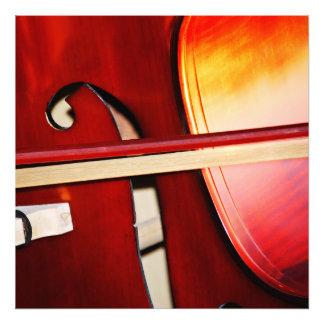 Beautiful Strings Photo