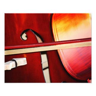Beautiful Strings Photo Print