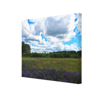 Beautiful Summer Afternoon 2016 Canvas Print