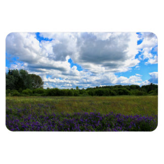 Beautiful Summer Afternoon 2016 Magnet