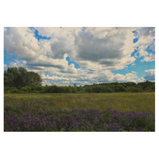 Beautiful Summer Afternoon 2016 Wood Poster