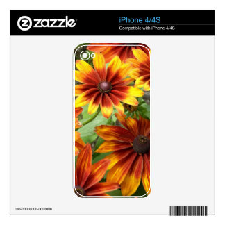 Beautiful Summer Daisies iPhone 4S Decals