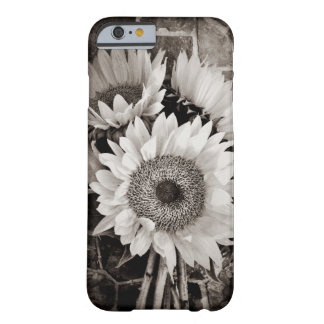 Beautiful Sunflower Bouquet Photo in Black & White Barely There iPhone 6 Case