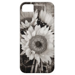 Beautiful Sunflower Bouquet Photo in Black & White iPhone 5 Covers