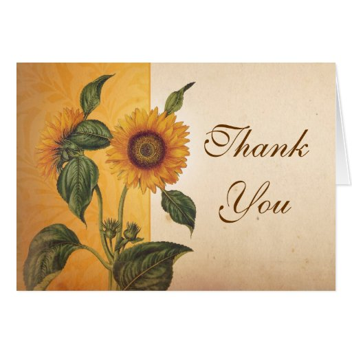 beautiful sunflower vintage thank you cards