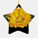 Beautiful Sunflower with Dark Brown Background Christmas Tree Ornament
