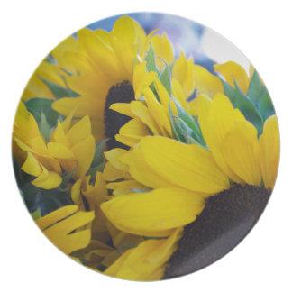 Beautiful Sunflowers Dinner Plate