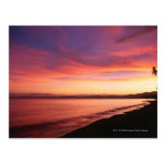 Beautiful sunset at the beach post cards