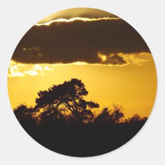 beautiful sunset classic round sticker