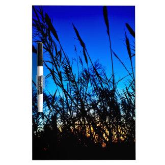 Beautiful Sunset Dry-Erase Board