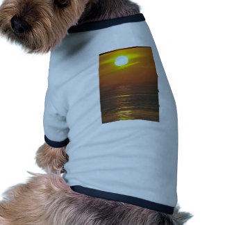 Beautiful Sunset: Encintas, California Dog Shirt