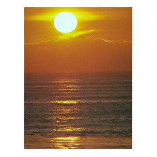 Beautiful Sunset: Encintas, California Post Cards