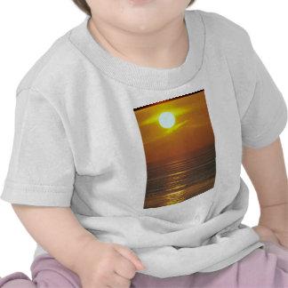Beautiful Sunset: Encintas, California Tee Shirt