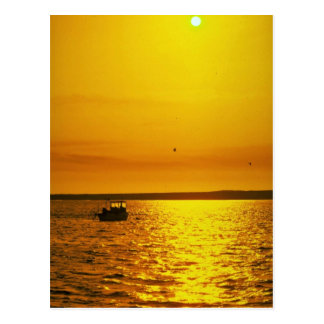 Beautiful Sunset: Hollster Ranch, Cojo Point, Cali Postcard