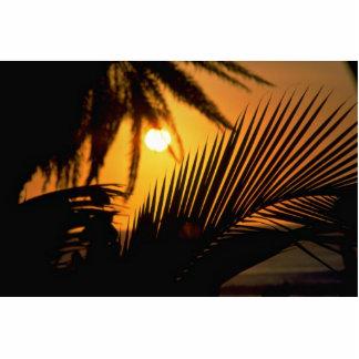 Beautiful Sunset: Kona, Hawaii Photo Cutout