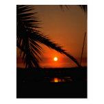Beautiful Sunset: Mission Bay, San Diego, Californ Postcard