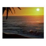 Beautiful Sunset: North Shore, Oahu, Hawaii Post Card
