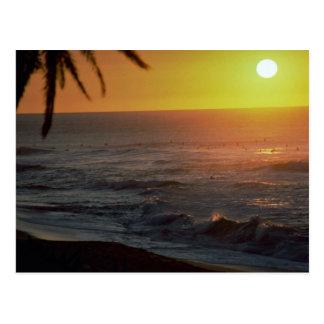 Beautiful Sunset: North Shore, Oahu, Hawaii Postcard