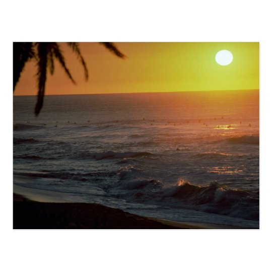 Beautiful Sunset: North Shore, Oahu, Hawaii Postcard
