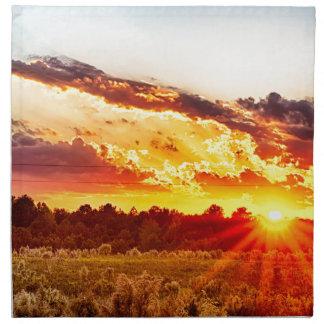 beautiful sunset over farmfield in autumn evening napkin