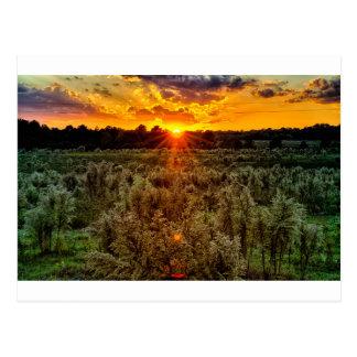 beautiful sunset over farmfield in autumn evening postcard