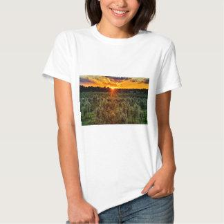 beautiful sunset over farmfield in autumn evening T-Shirt
