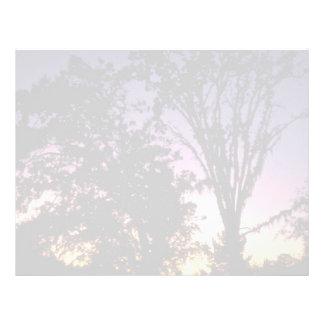 Beautiful Sunset: Peteluma, California Letterhead