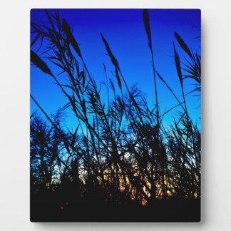 Beautiful Sunset Plaque