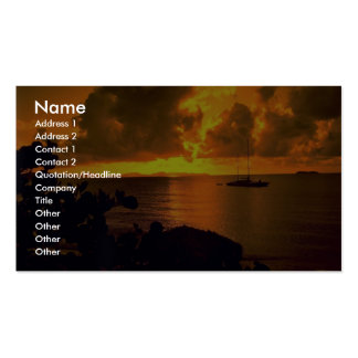 Beautiful Sunset: Sebastian's, Virgin Gorda, Briti Double-Sided Standard Business Cards (Pack Of 100)