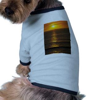 Beautiful Sunset: Swami's Encintas, California Doggie T-shirt