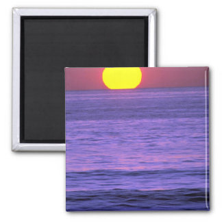 Beautiful Sunset: Table Top Reef, Solana Beach, Ca Refrigerator Magnets
