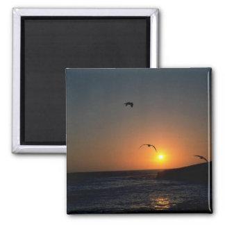 Beautiful Sunset: Todos Santos Island, Baja, Mexic 2 Inch Square Magnet