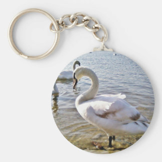 Beautiful Swan Bird Basic Round Button Keychain