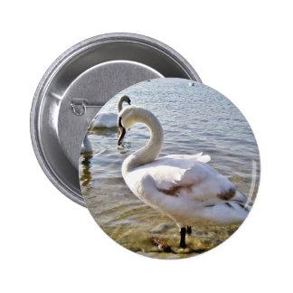 Beautiful Swan Bird Button