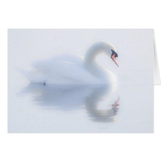Beautiful Swan Card