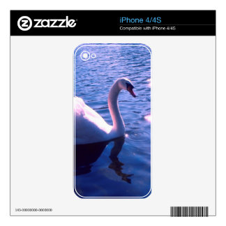 Beautiful swan in lake iPhone 4S decals