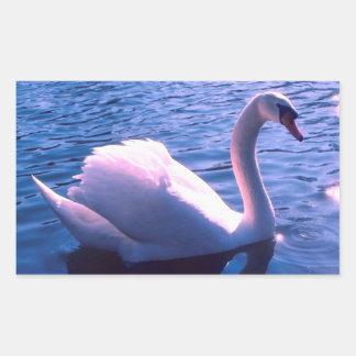 Beautiful swan in lake rectangular sticker