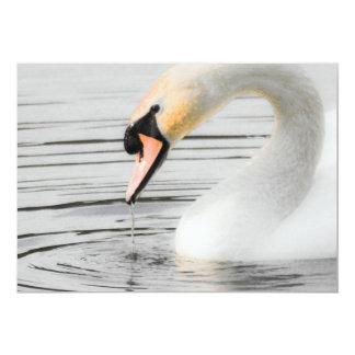 Beautiful Swan Invitation