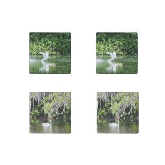 Beautiful Swan Stone Magnet