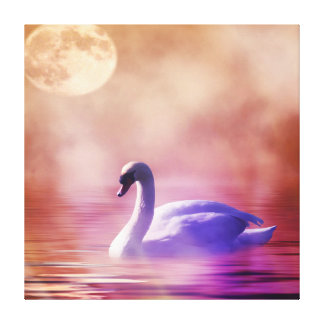 Beautiful Swan Wrapped Canvas
