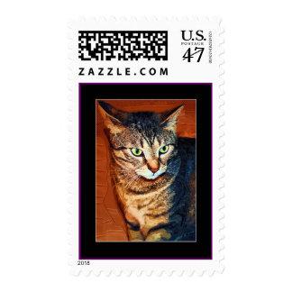 Beautiful Tabby Cat Artistic Stamp