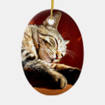 Beautiful tabby cat Double-Sided oval ceramic christmas ornament