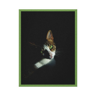 Beautiful Tabby Cat with Green Eyes Canvas Print