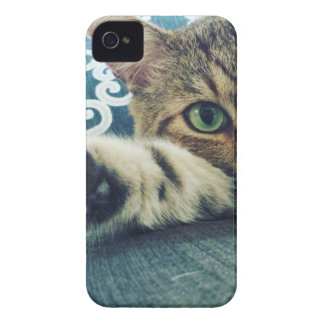 Beautiful Tabby Cat with Green Eyes Case-Mate iPhone 4 Case