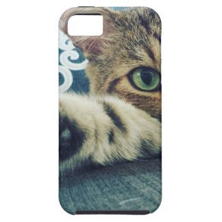 Beautiful Tabby Cat with Green Eyes iPhone SE/5/5s Case