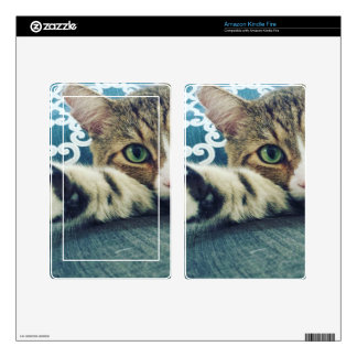 Beautiful Tabby Cat with Green Eyes Skins For Kindle Fire