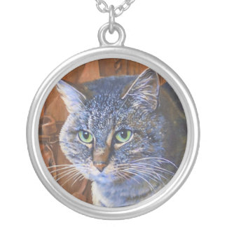 Beautiful Tabby from an Original Painting Necklace