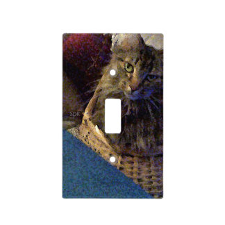 Beautiful Tabby Maine Coon Kitty Cat in a Basket Light Switch Cover