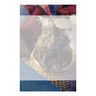 Beautiful Tabby Maine Coon Kitty Cat in a Basket Stationery