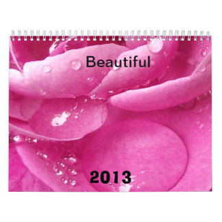 Beautiful the Calendar for 2013 year